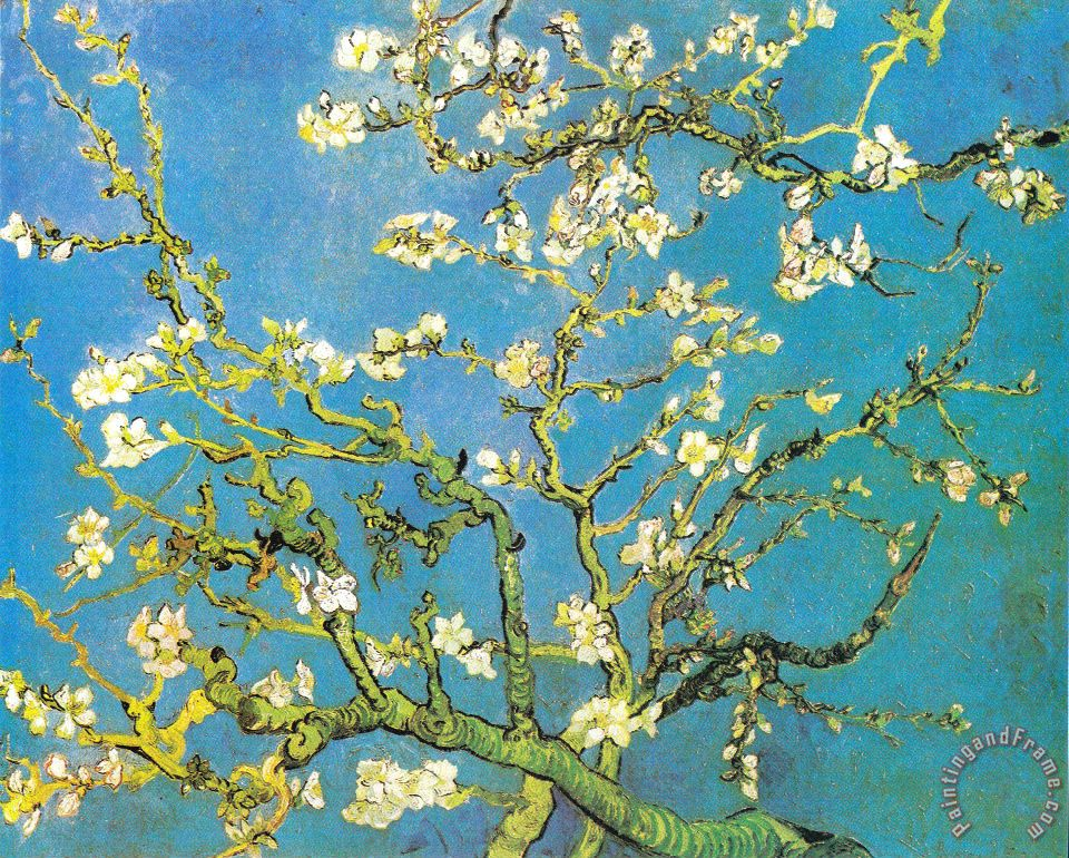 Blossoming Almond-branches painting - Vincent van Gogh Blossoming Almond-branches Art Print