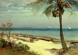 Tropical Coast by Albert Bierstadt
