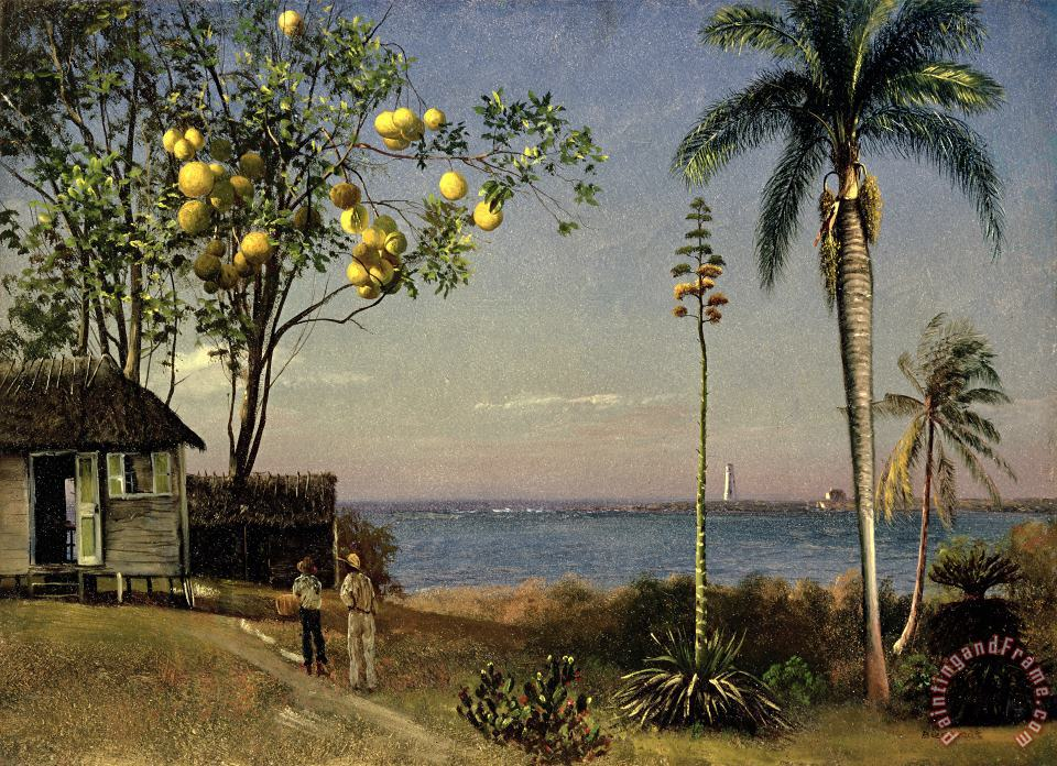 Tropical Scene painting - Albert Bierstadt Tropical Scene Art Print