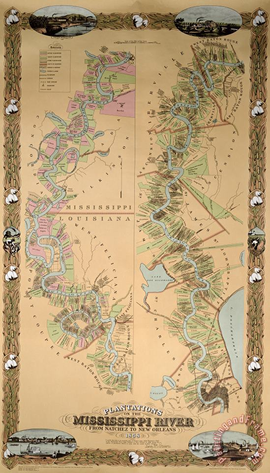 Map depicting plantations on the Mississippi River from Natchez to New Orleans painting - American School Map depicting plantations on the Mississippi River from Natchez to New Orleans Art Print