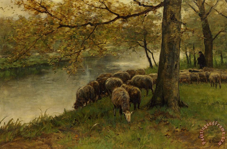 Sheep Watering by a River painting - Anton Mauve Sheep Watering by a River Art Print