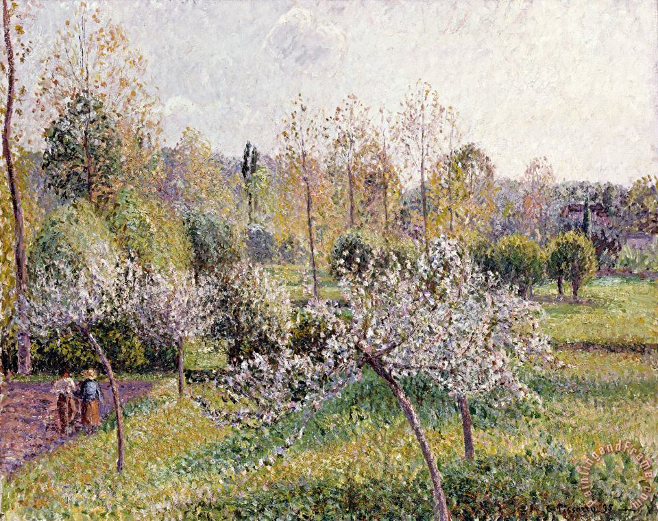 Apple Trees in Blossom, Eragny painting - Camille Pissarro Apple Trees in Blossom, Eragny Art Print