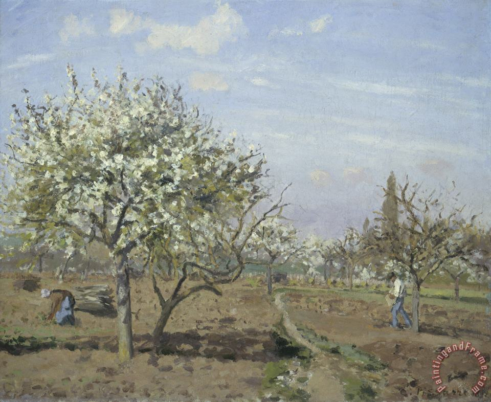 Orchard in Bloom, Louveciennes painting - Camille Pissarro Orchard in Bloom, Louveciennes Art Print