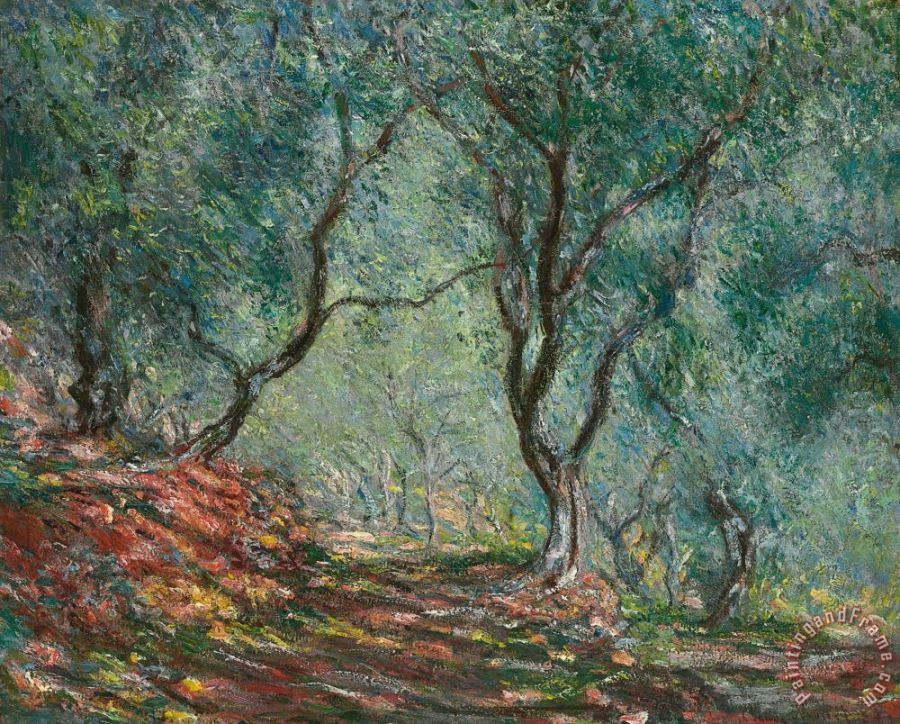 Olive Trees in the Moreno Garden painting - Claude Monet Olive Trees in the Moreno Garden Art Print