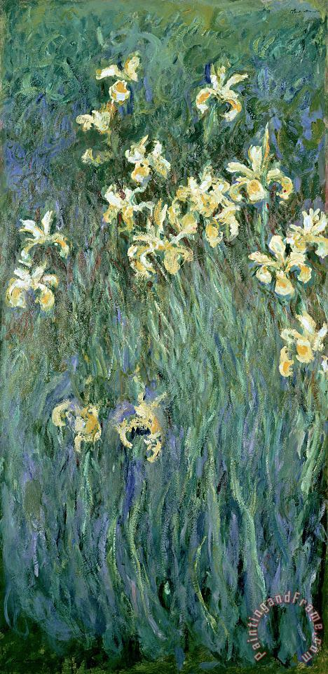 Claude Monet The Yellow Irises Art Print