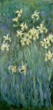 The Yellow Irises by Claude Monet