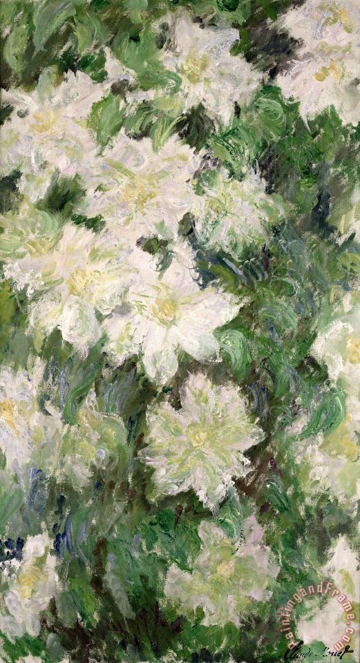 White Clematis painting - Claude Monet White Clematis Art Print