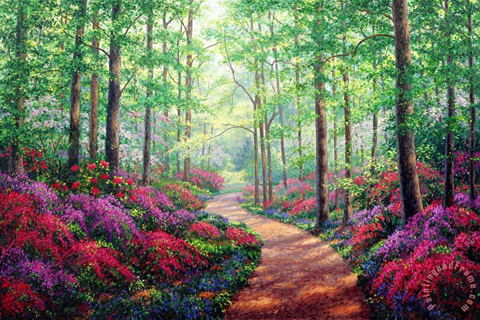 Woodland Walk painting - Collection Woodland Walk Art Print