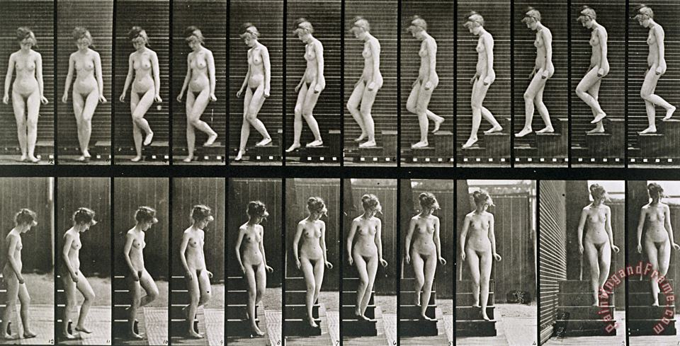Woman Descending Steps painting - Eadweard Muybridge Woman Descending Steps Art Print