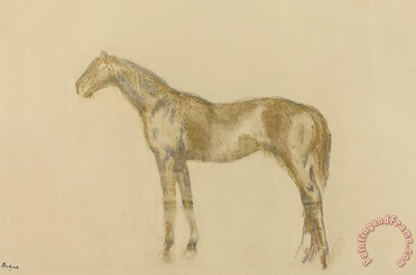 Edgar Degas Horse Painting Horse Print For Sale