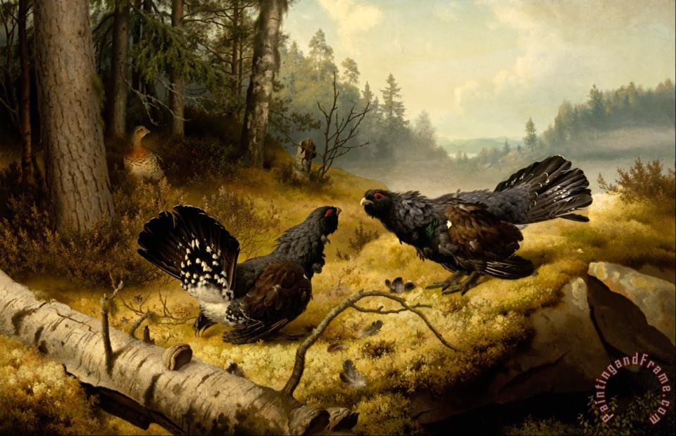 Ferdinand von Wright The Fighting Capercaillies Art Painting