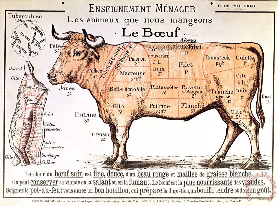 Beef painting - French School Beef Art Print