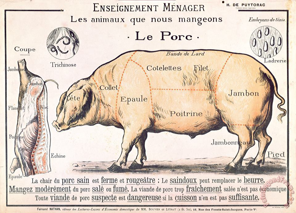 French School Cuts of Pork Art Print