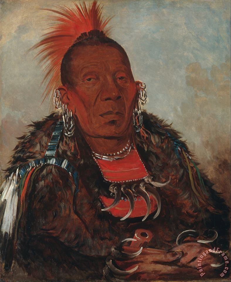 Wah Ro Nee Sah, The Surrounder, Chief of The Tribe painting - George Catlin Wah Ro Nee Sah, The Surrounder, Chief of The Tribe Art Print