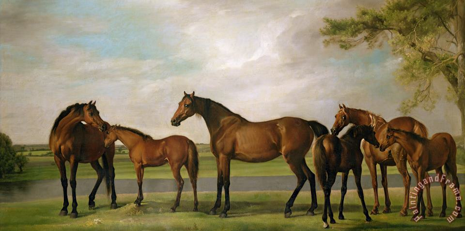 Mares And Foals Disturbed By An Approaching Storm painting - George Stubbs Mares And Foals Disturbed By An Approaching Storm Art Print