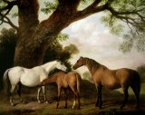 Two Mares and a Foal by George Stubbs