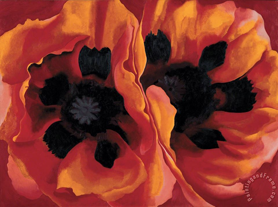 Oriental Poppies painting - Georgia O'keeffe Oriental Poppies Art Print