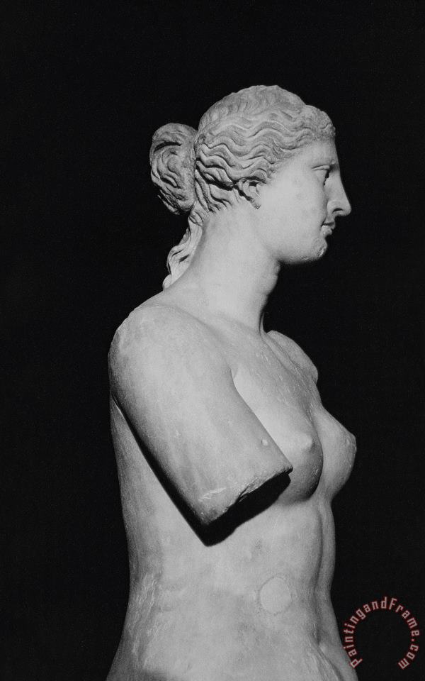 Greek School Venus de Milo Art Print