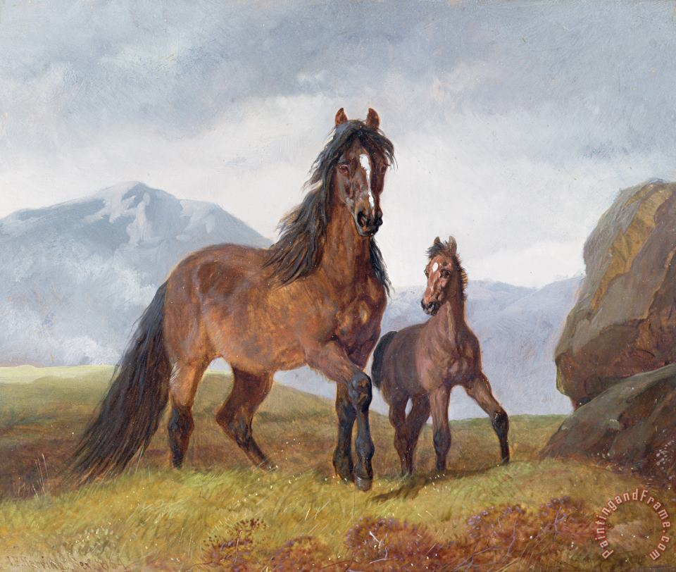 A Welsh Mountain Mare and Foal painting - John Frederick Herring Snr A Welsh Mountain Mare and Foal Art Print
