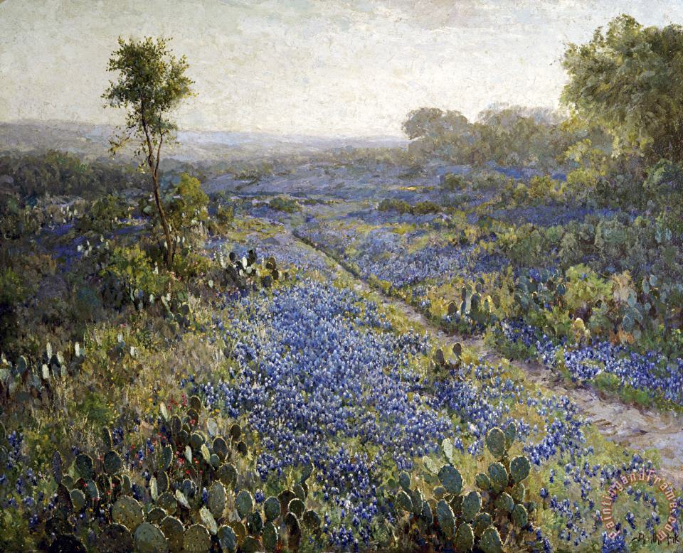 Field of Texas Bluebonnets And Prickly Pear Cacti painting - Julian Onderdonk Field of Texas Bluebonnets And Prickly Pear Cacti Art Print