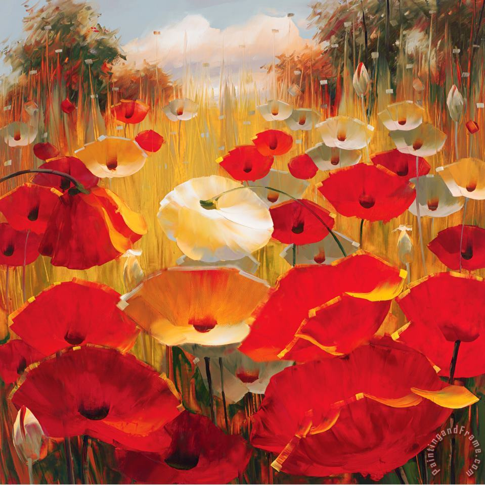 Meadow Poppies III painting - Lucas Santini Meadow Poppies III Art Print