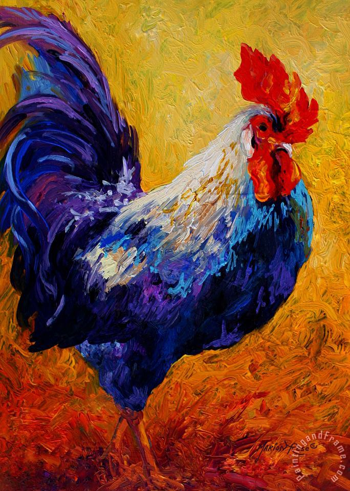 Indy - Rooster painting - Marion Rose Indy - Rooster Art Print