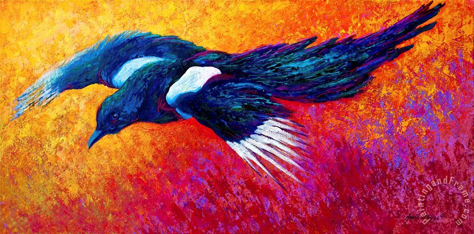 Magpie in Flight painting - Marion Rose Magpie in Flight Art Print