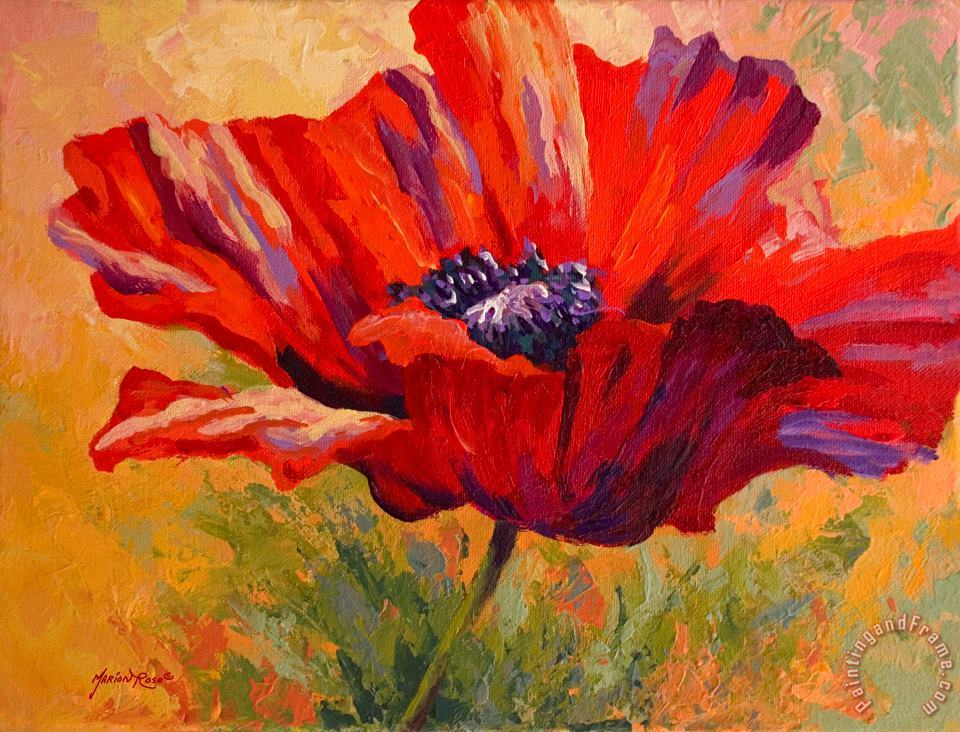 Red Poppy II painting - Marion Rose Red Poppy II Art Print