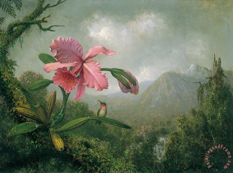 Martin Johnson Heade orchid and hummingbird near a mountain waterfall Art Print