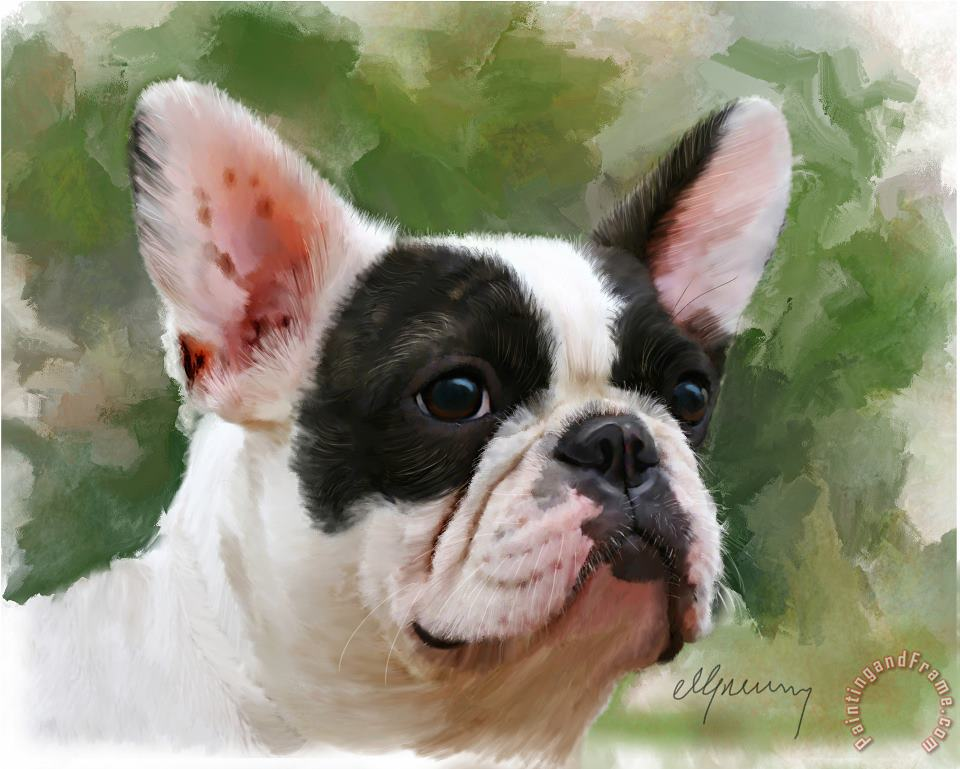 Michael Greenaway Pet Bulldog Portrait Art Painting