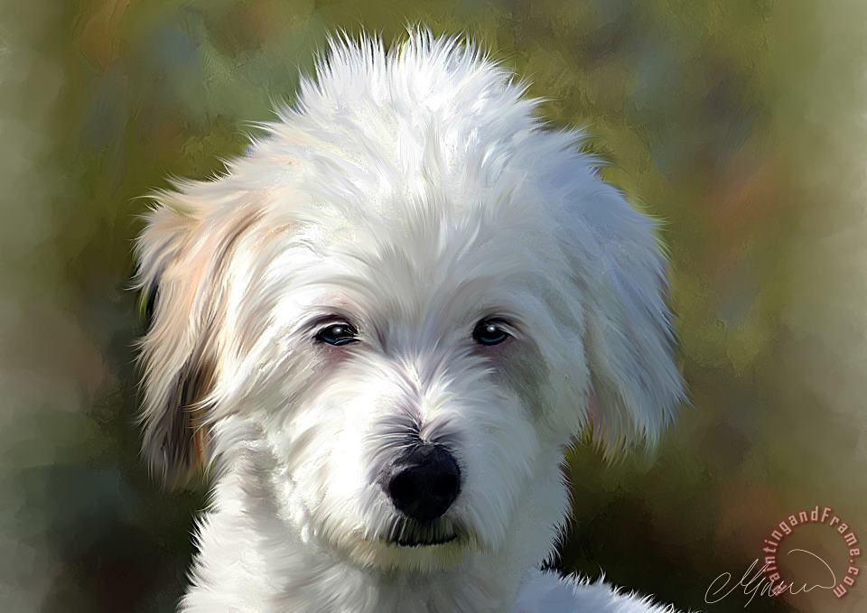 White Terrier Dog Portrait painting - Michael Greenaway White Terrier Dog Portrait Art Print