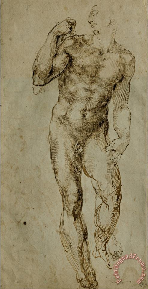 Nude Male Figure Seen Frontally Circa 1502 1506 painting - Michelangelo Buonarroti Nude Male Figure Seen Frontally Circa 1502 1506 Art Print