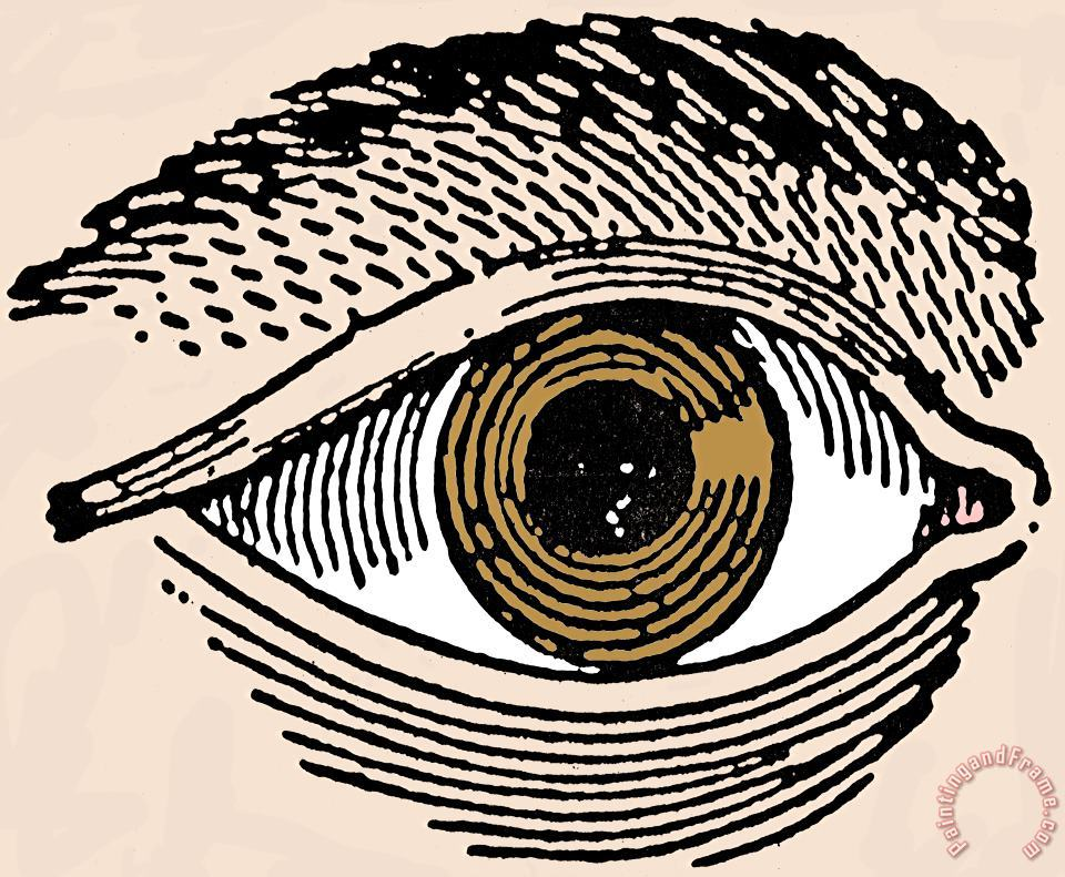 HUMAN EYE, 19th CENTURY painting - Others HUMAN EYE, 19th CENTURY Art Print