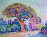 The Pine Tree at Saint Tropez by Paul Signac