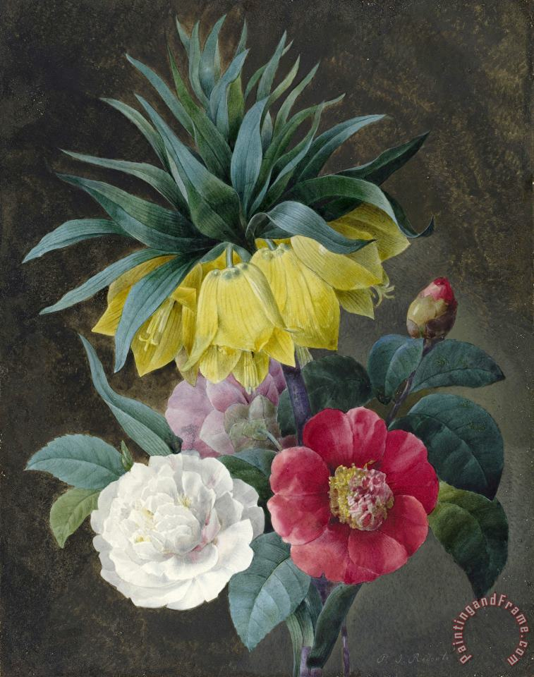 Pierre Joseph Redoute Four Peonies And a Crown Imperial Art Painting