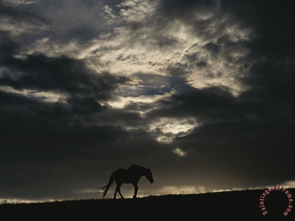 A Wild Horse Is Silhouetted Under Ominous Storm Clouds painting - Raymond Gehman A Wild Horse Is Silhouetted Under Ominous Storm Clouds Art Print