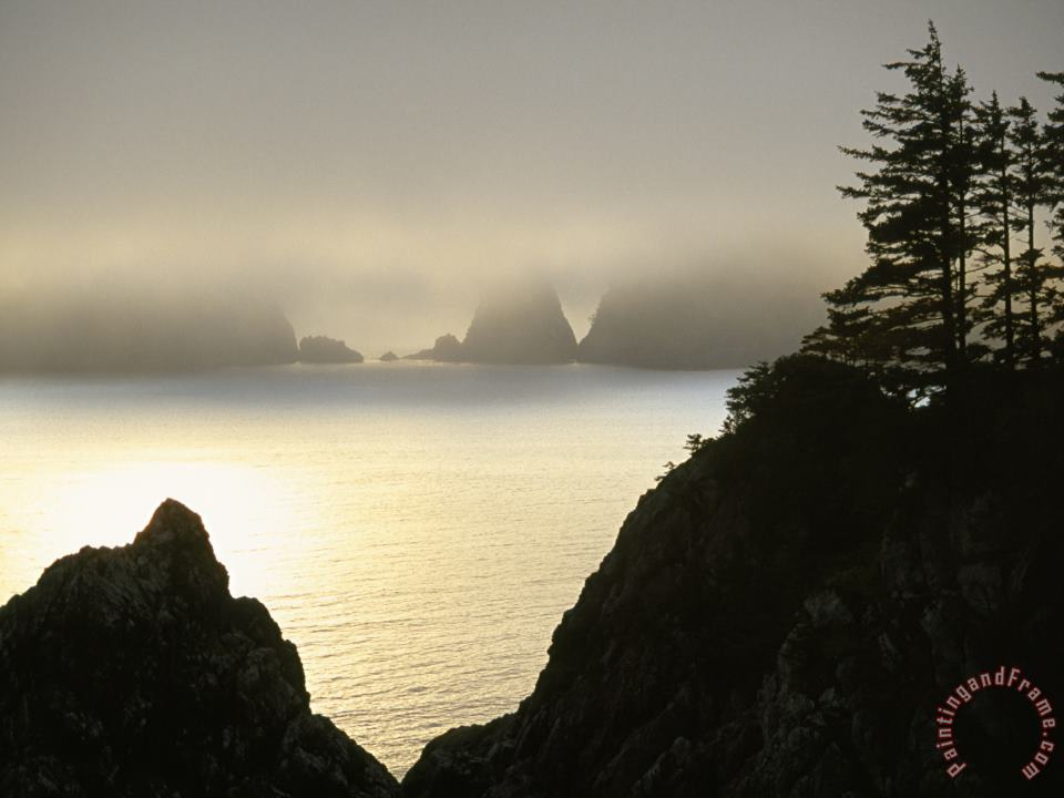 Pacific Fog Cloaks Rocky Outcroppings at Puffin Cove painting - Raymond Gehman Pacific Fog Cloaks Rocky Outcroppings at Puffin Cove Art Print