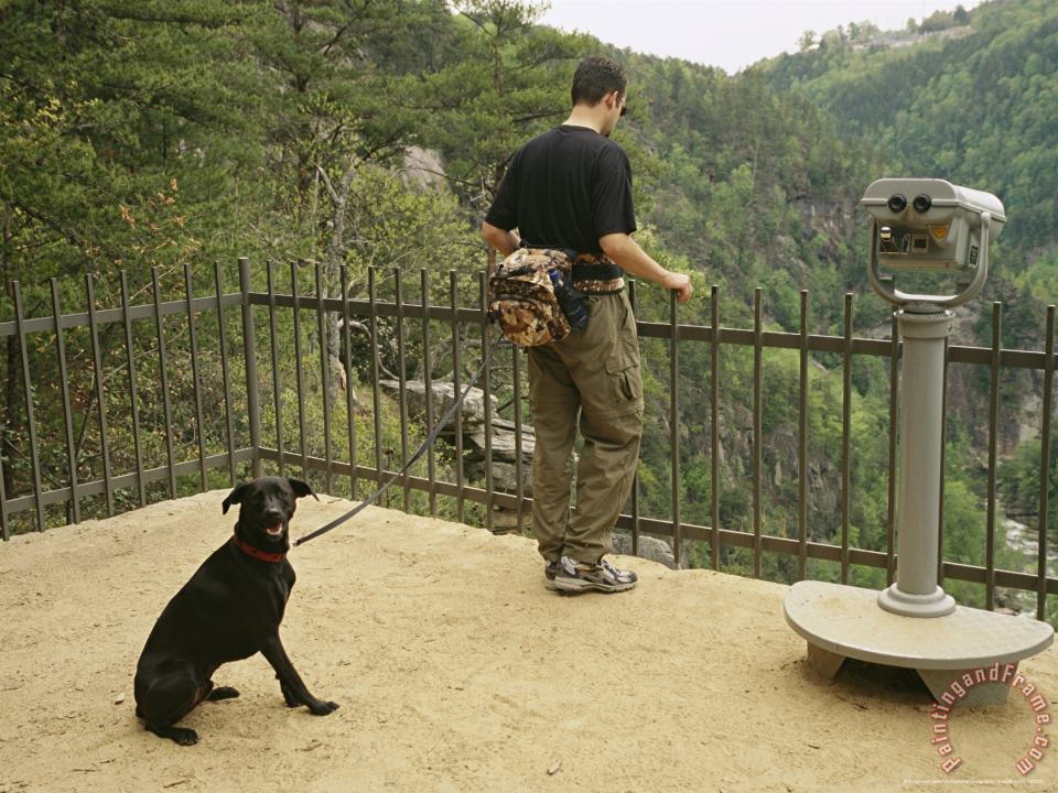 Tourist And His Dog Take in The View From a Scenic Overlook painting - Raymond Gehman Tourist And His Dog Take in The View From a Scenic Overlook Art Print