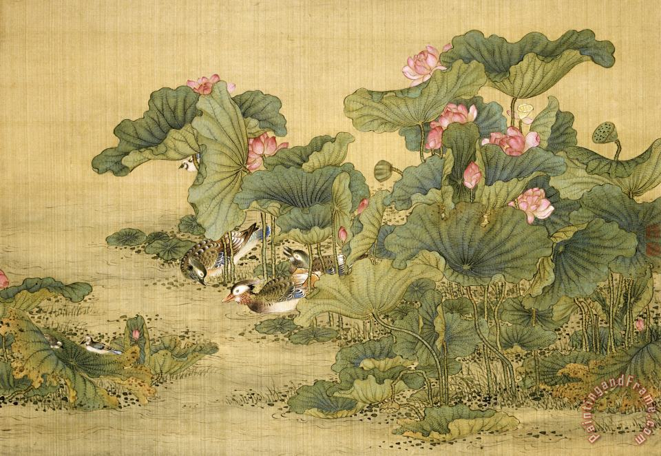 Album of Birds And Animals (mandarin Ducks And Lotus Flowers) painting - Shen Nanpin Album of Birds And Animals (mandarin Ducks And Lotus Flowers) Art Print