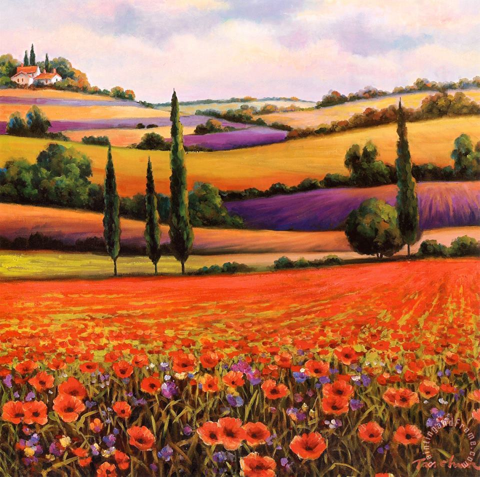 T. C. Chiu Fields of Poppies I Art Print