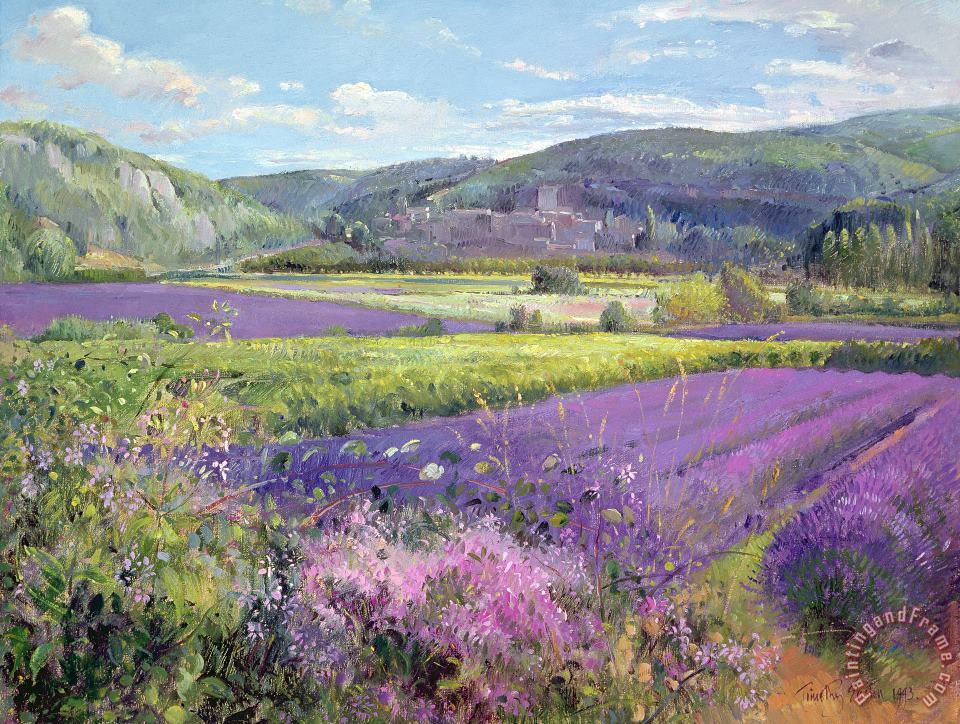 Lavender Fields in Old Provence painting - Timothy Easton Lavender Fields in Old Provence Art Print