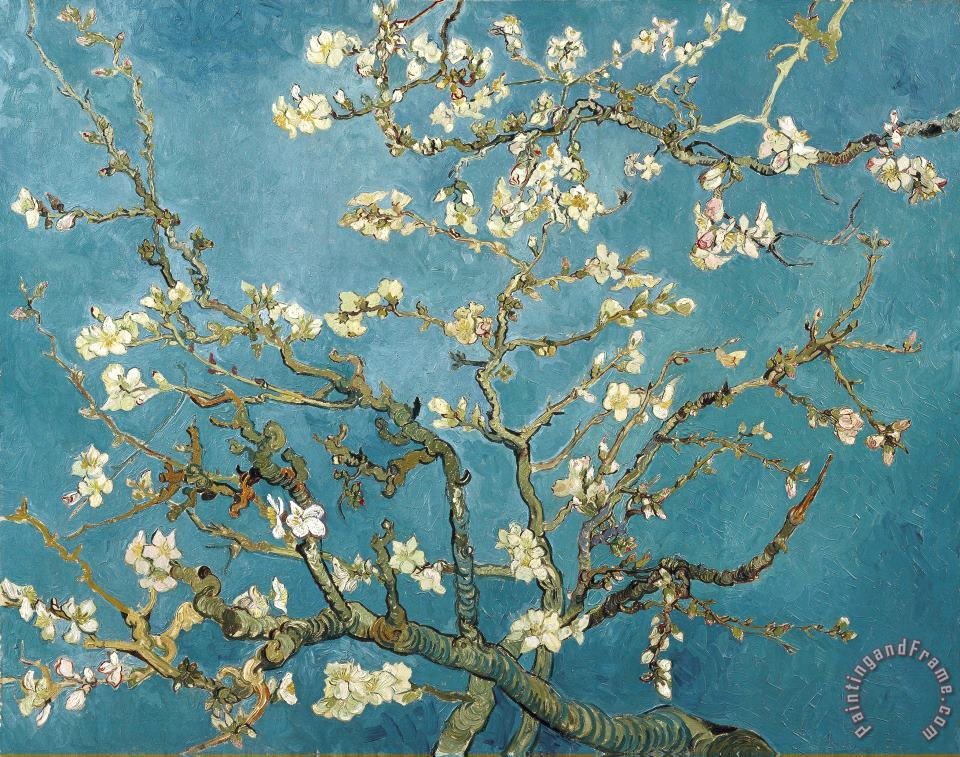 Almond Blossoms painting - Vincent van Gogh Almond Blossoms Art Print