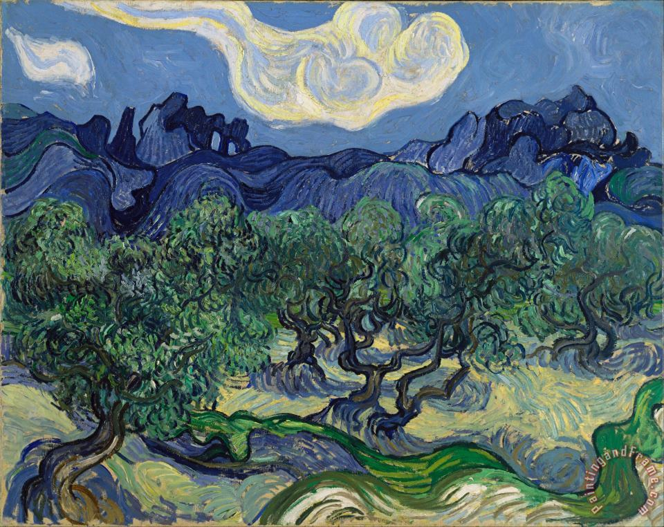 The Olive Trees painting - Vincent van Gogh The Olive Trees Art Print