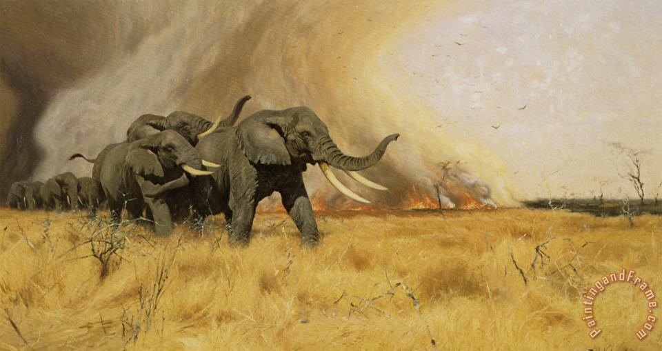 Elephants Moving Before a Veldt Fire painting - Wilhelm Kuhnert Elephants Moving Before a Veldt Fire Art Print