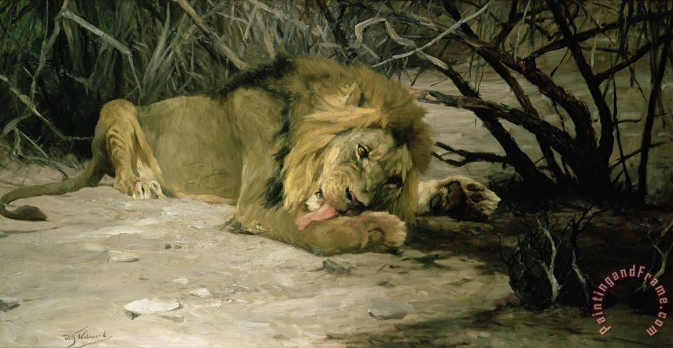 Lion Reclining in a Landscape painting - Wilhelm Kuhnert Lion Reclining in a Landscape Art Print
