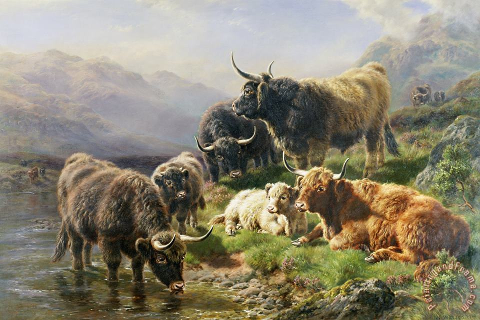 William Watson Highland Cattle Art Print
