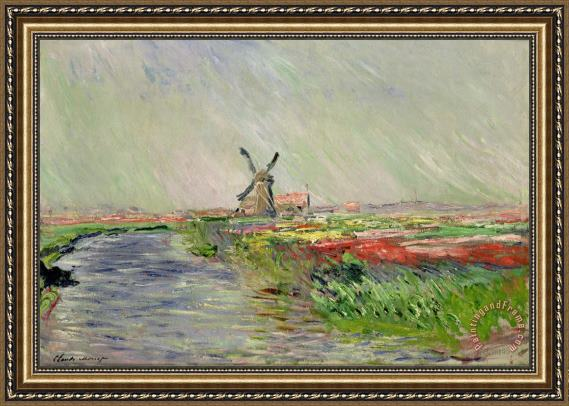 Claude Monet Tulip Field in Holland Framed Print