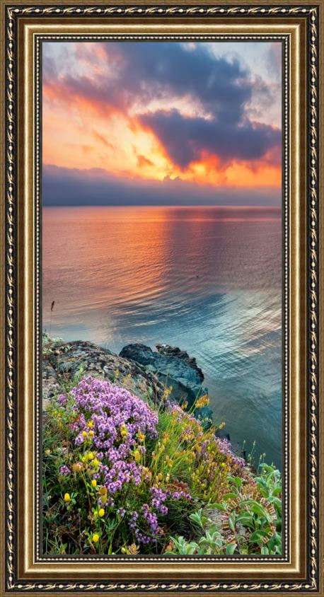 Collection 12 Wild Thyme by the Sea Framed Print
