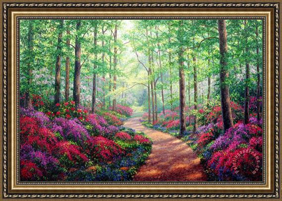 Collection Woodland Walk Framed Painting