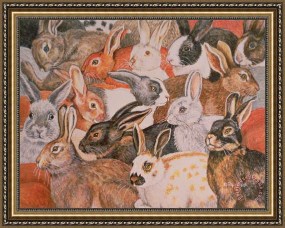 Ditz Rabbit Spread Framed Print